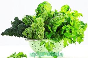 zelenye-ovoshhi-istochnik-vitaminov-1