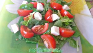salat-s-mocarelloj-i-pomidorami-2