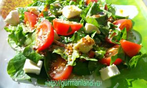 salat-s-mocarelloj-i-pomidorami-3