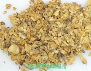 griby-i-kurinoe-file-s-majonezom-8
