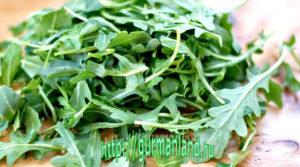 salat-iz-svekly-s-rukkoloj-2